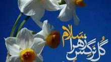 کلیپ تصویری مهدوی: گل نرگس گل زهرا - هدهد