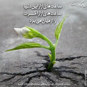 پیامبر اکرم (ص) : ساعت هاى آزار اين دنيا ساعت هاى آزار آخرت را از میان می برد.